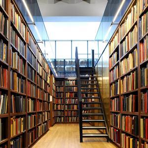 Библиотеки Романовки