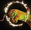 Цирки в Романовке